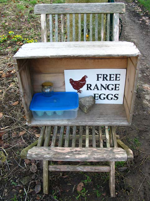 Free range eggs for sale