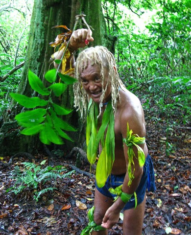 Rainforest hike Rarotonga