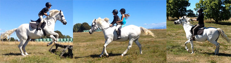Riding Sadie in Taupo