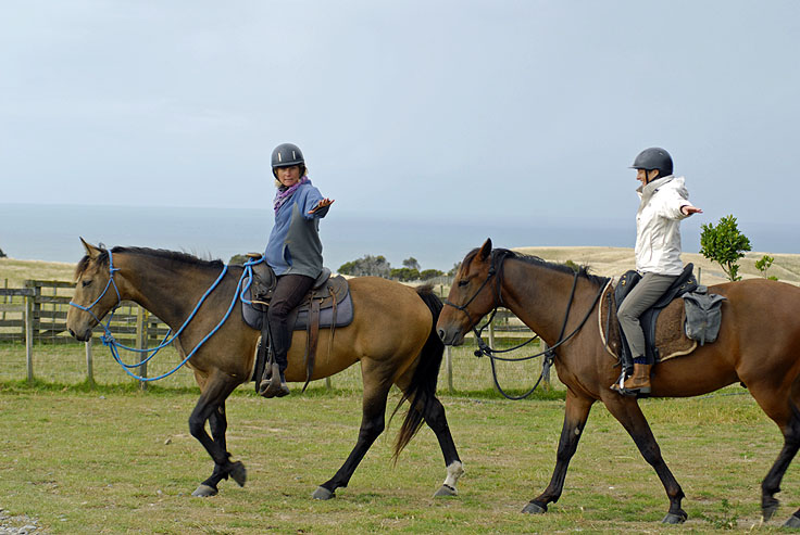 Riding with Dzida Cape Kidnappers Farm NZ