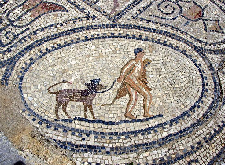 Mosaic at Volubilis, Fez