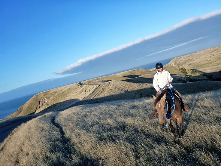 Out on the lonesome trail at Cape Kidnappers
