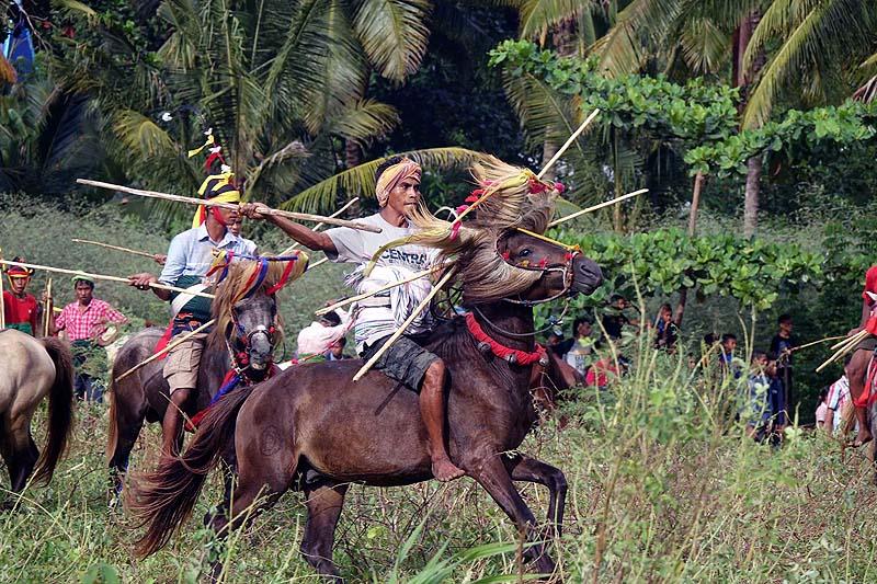 Spear throwing horsemen Pasola Festival Sumba Indonesia