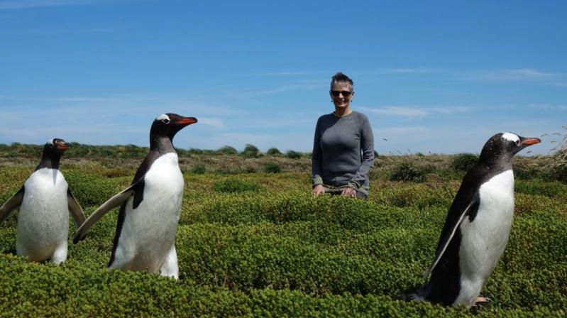 alice-3-penguins.jpg