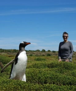 Alice & Co trip 2018 to the Falkands Antartica and South America