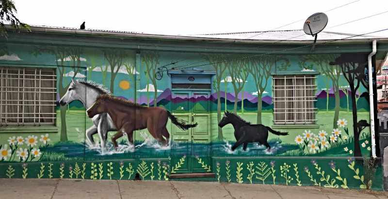 HORSE MURAL IN VALPARISO CHILE
